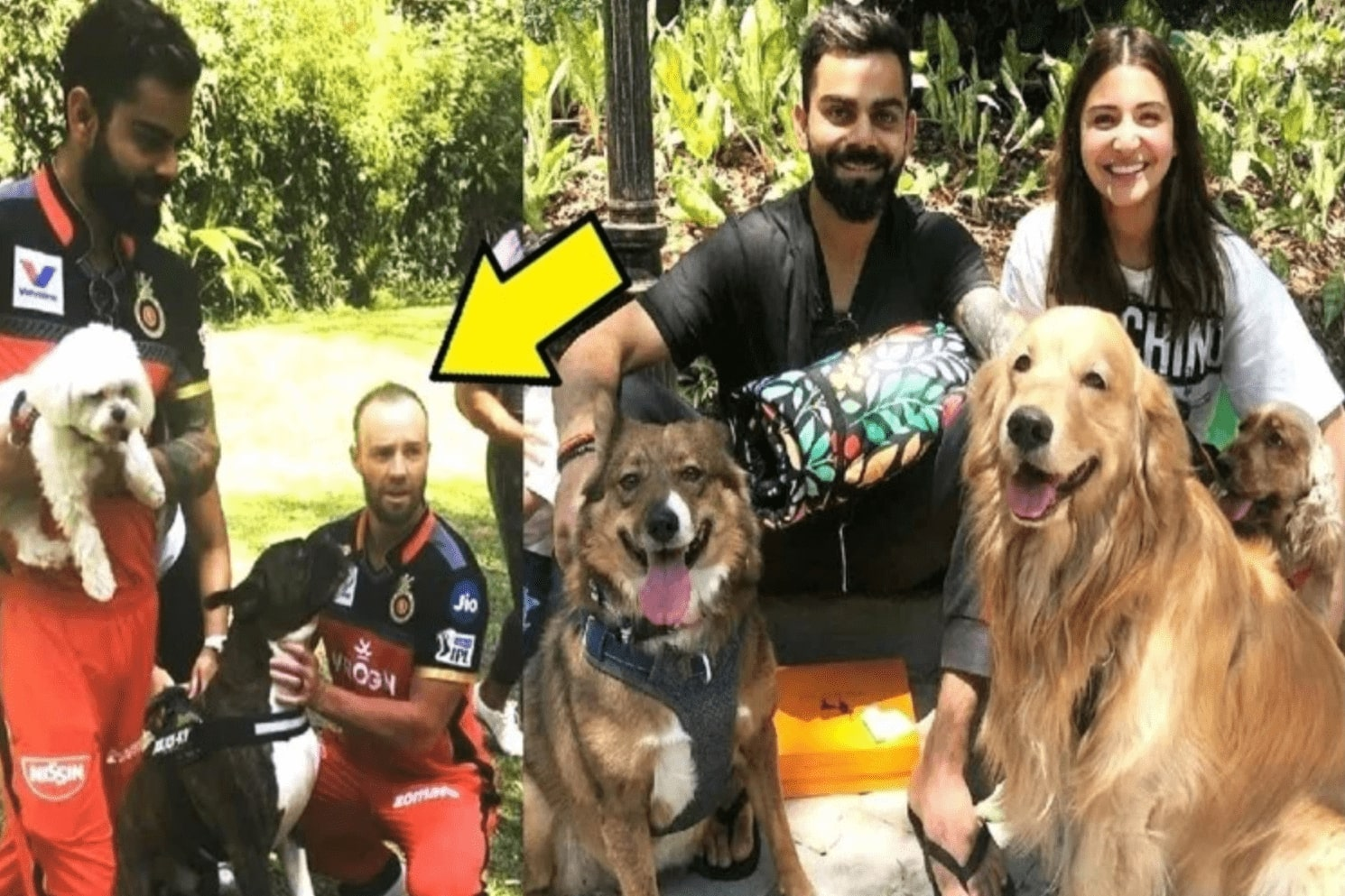 PETA India selected Person of the Year 2019 for Virat Kohli