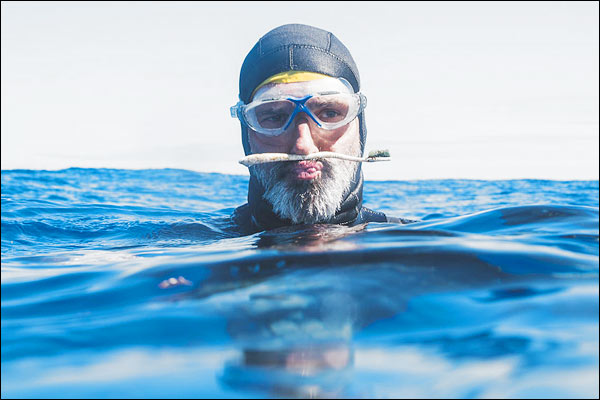 Lakomte swims in the Great Pacific Garbage Patch of the Pacific Ocean