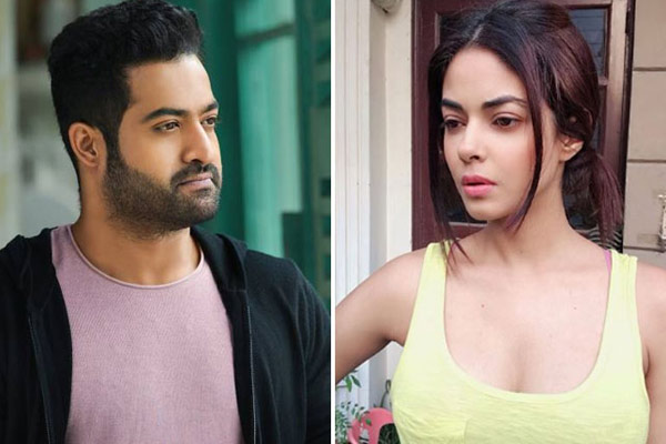 Section 375&rsquos Meera Chopra receives rape & death threats for not being a Jr. NTR fan