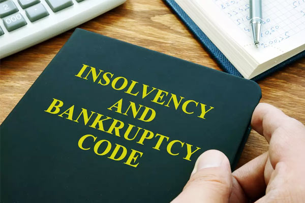 Proceedings Under Insolvency Law